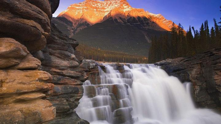 Les chutes d'Athabasca dans la province d'Alberta, Canada