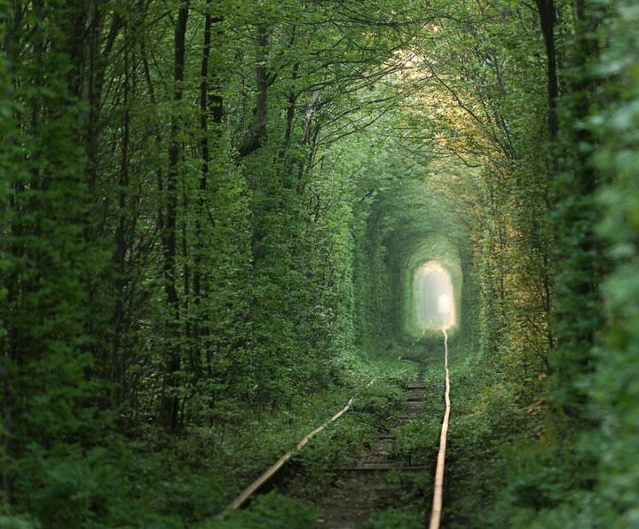 Le tunnel de l'amour à Klevan, Ukraine