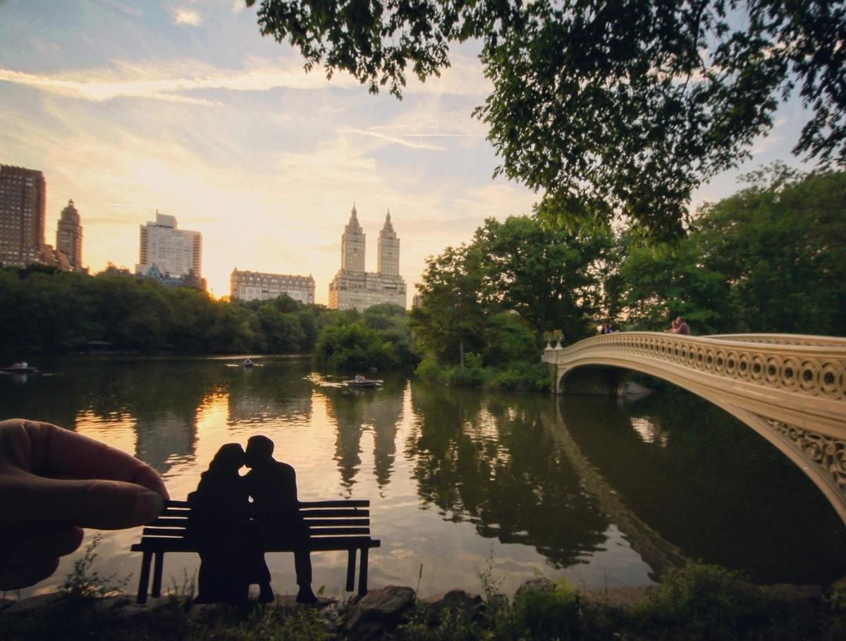 paperboyo : central park New-York