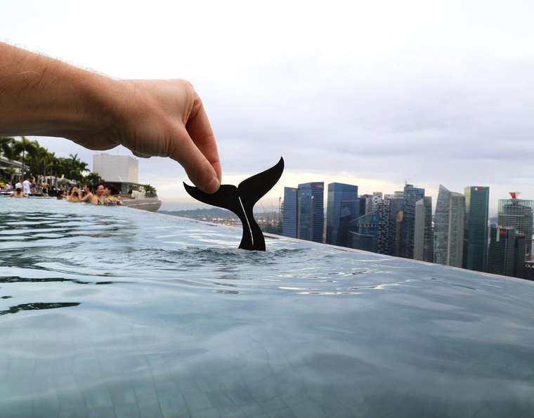 paperboyo-15-baleine-singapour