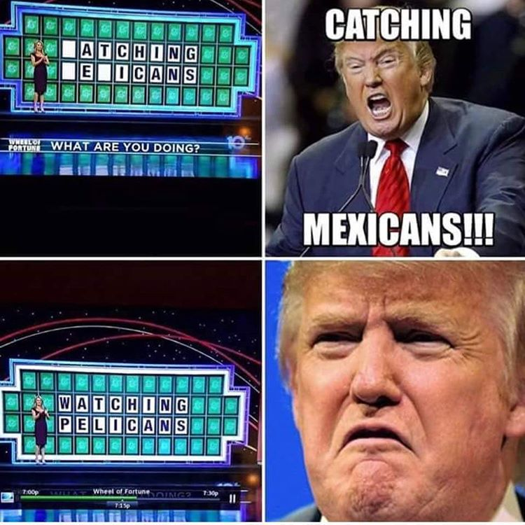 donald trump catching mexicans