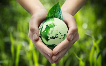 3 tendances eco-friendly et marketing pour un développement durable