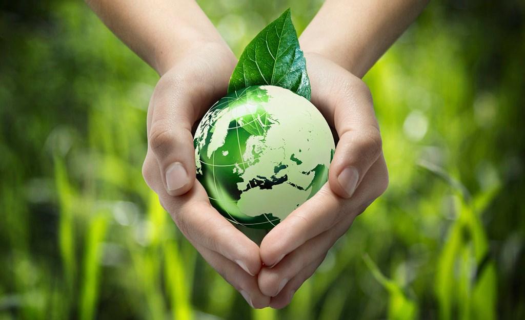 eco-friendly, marketing et développement durable