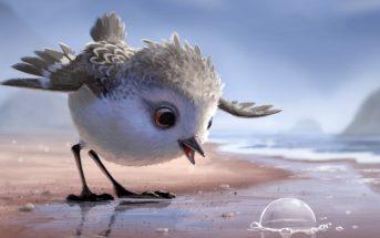 Piper : le mignon court-métrage Pixar sur un oisillon affamé