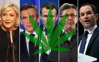 Légalisation du cannabis : l'avis des candidats à l'élection présidentielle