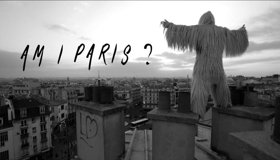 Am I Paris ? de Redha Medjellekh