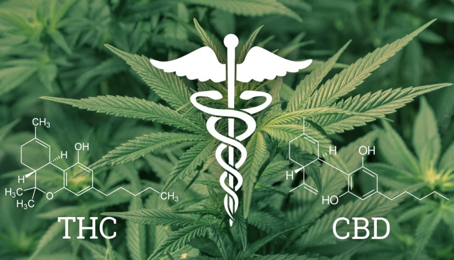 cannabinoide : différences CBD vs THC