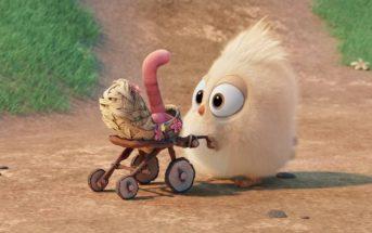 Un oisillon devient ami avec un ver de terre : le court-métrage trop mignon de Angry Birds