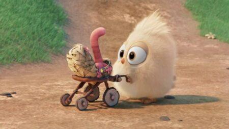 un oisillon devient ami avec un vers de terre - court-métrage d'animation angry birds