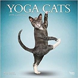 calendrier 2018 yoga cats