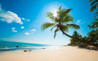 Top 5 des meilleures destinations pour prendre le soleil