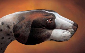Bodypainting : il peint des formes d'animaux sur des mains