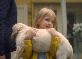 Non à l'abandon : l'émouvant film 2018 de 30 Millions d'Amis