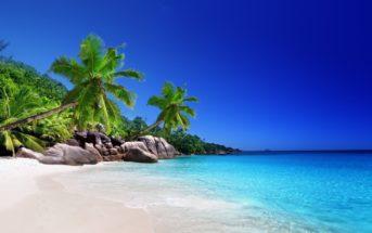 Vacances de rêve : se prélasser sous le soleil des Seychelles durant l'hiver