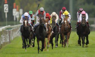 pari hippique turf : parier sur des courses de chevaux