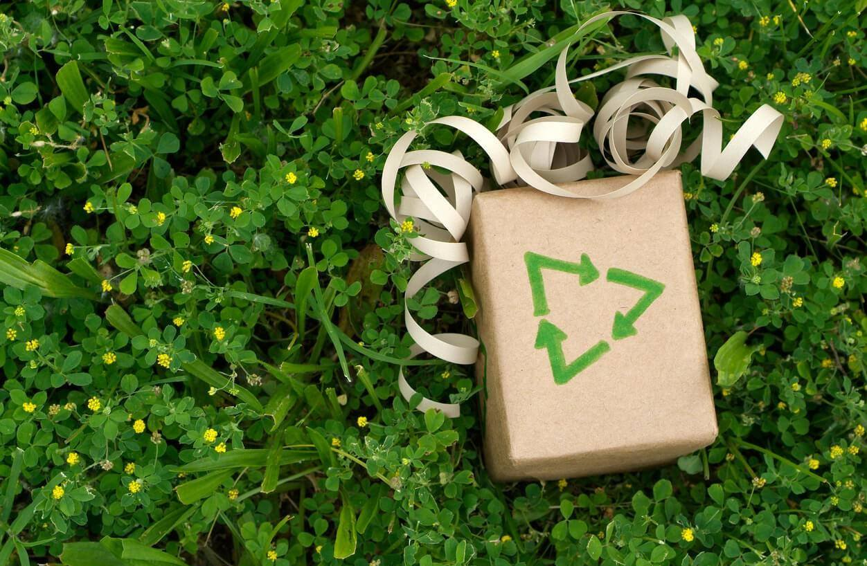 Noel 2018 Qu Offrir A Un Ecolo 17 Idees Cadeaux Ethiques Et