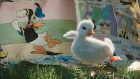 Disneyland Paris - The little duck #LaMagiePourDeVrai