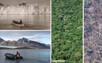 Le #10YearsChallenge détourné pour la cause écologique