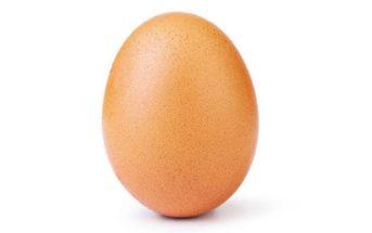 Pourquoi la photo d'un œuf est devenue la plus likée d'Instagram ?