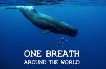 """Vidéo d'apnée : """"One Breath Around The World"""" par Guillaume Néry"""