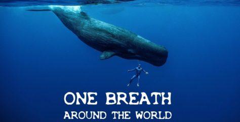 Guillaume Néry fait le tour du monde en apnée dans une magnifique vidéo