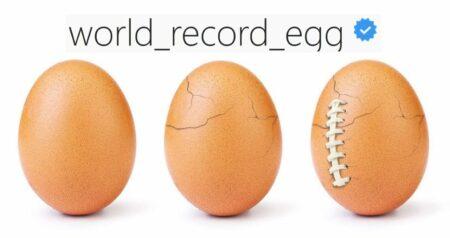 world_record_egg : une éclosion pendant le Super Bowl