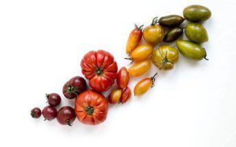 Adopte ma tomate : connaissez-vous ce site de rencontre un peu particulier ?