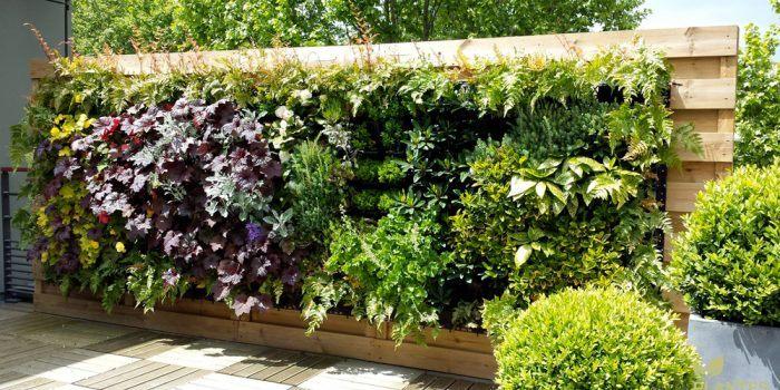 Fabriquer soi même un mur végétal avec des palettes en bois