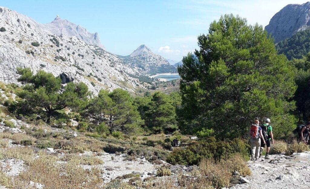 Randonnée dans la Serra Tramuntana à Majorque