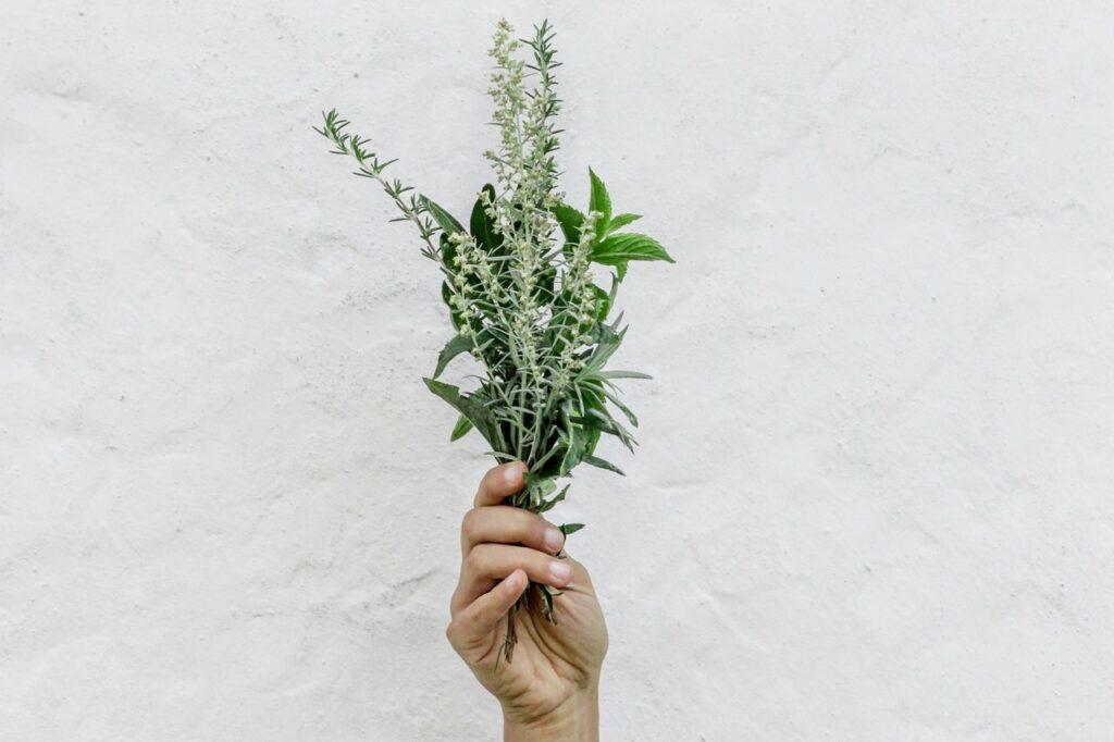 Bouquet d'herbes aromatiques comestibles.