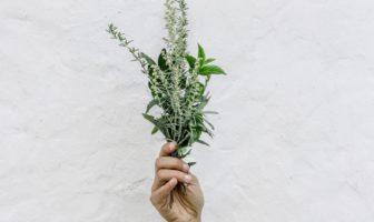 bouquet comestible herbes aromatiques