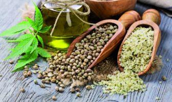 graine de chanvre : un super aliment bon pour la santé