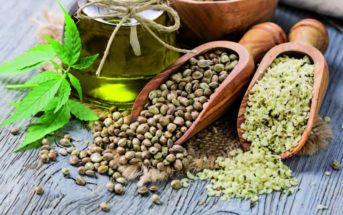 Saviez-vous que la graine de chanvre est bonne pour la santé ?