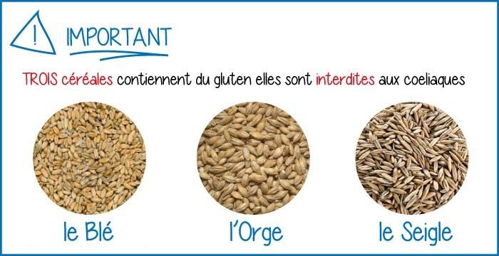 On trouve du Gluten dans les céréales (blé, orge et seigle)