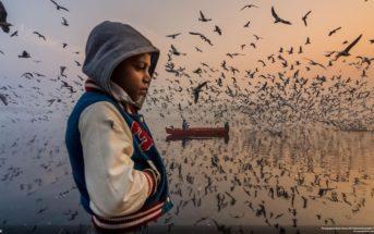 National Geographic Travel Photo 2019: découvrez les gagnants du concours