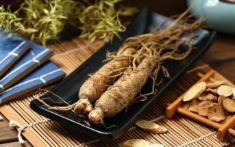 Super-aliment : découvrez le ginseng et ses bienfaits sur la santé