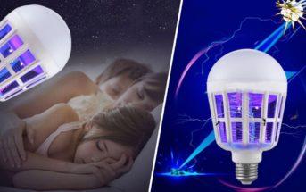 Comment lutter contre les insectes avec une lampe anti-moustiques?