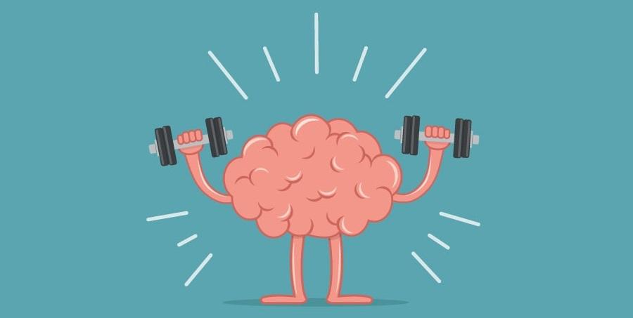 fonctions cognitives : mémoire