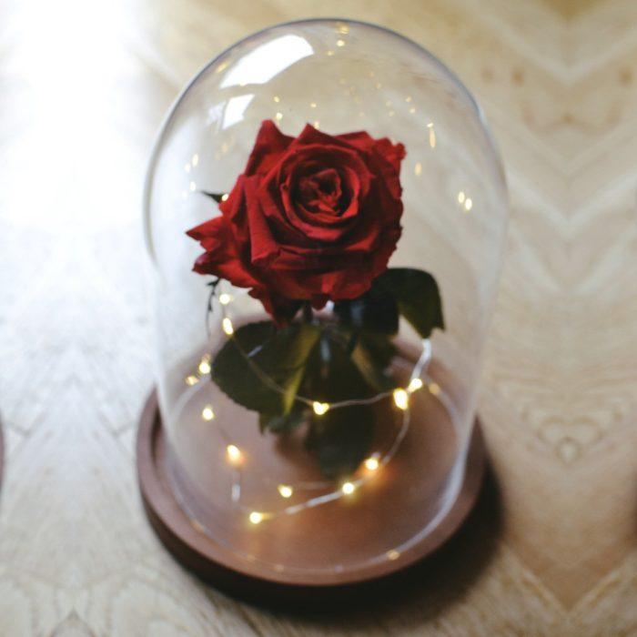 Rose éternelle sous inspirée de la belle et la bête