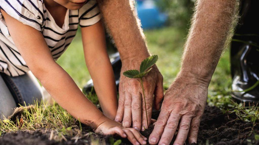 agriculture bio familiale