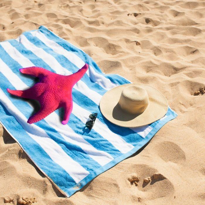 Détournement de l'étoile de mer qui ressemble à Patrick de Bob l'éponge - 08 - plage