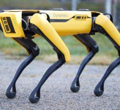 Découvrez Spot : le robot-chien futuriste disponible à la vente !