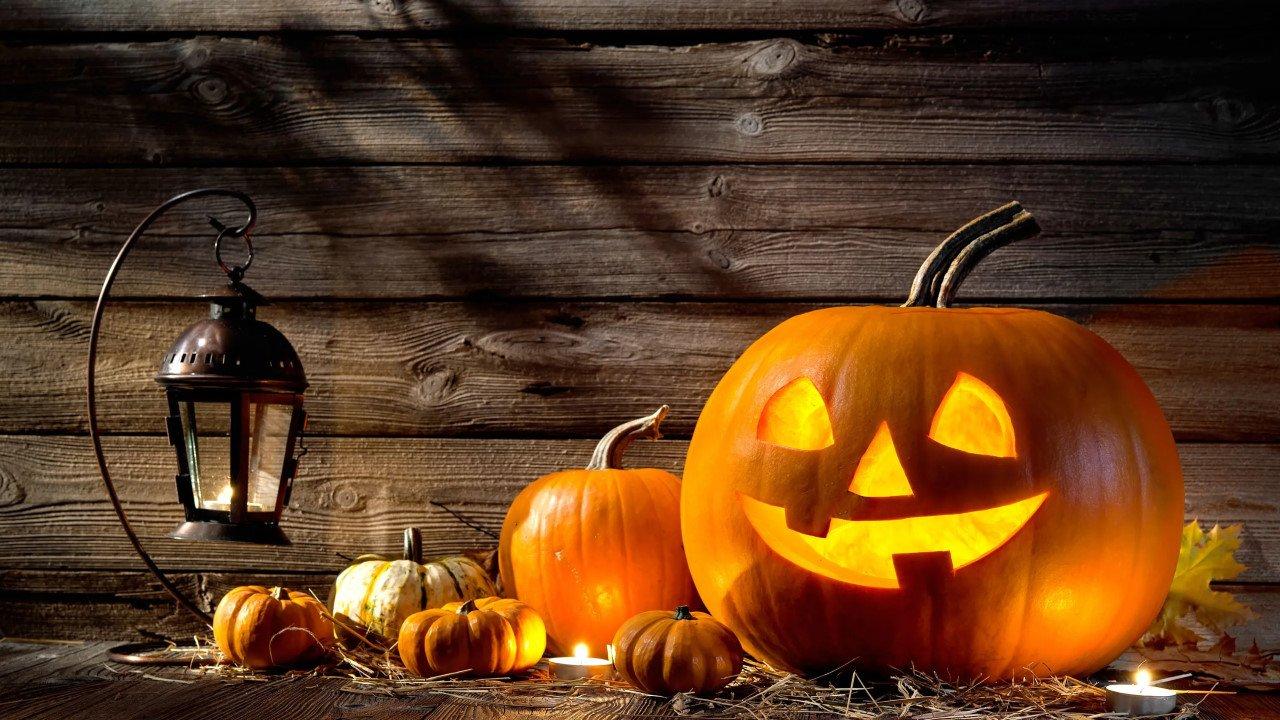 halloween : idées de programmes