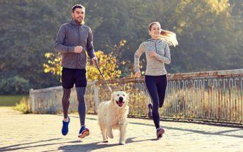 Comment faire du sport avec son chien ?