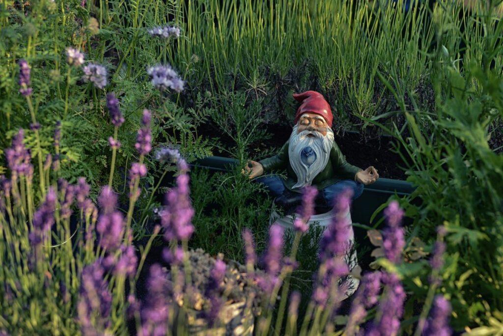 Nain de jardin qui médite.
