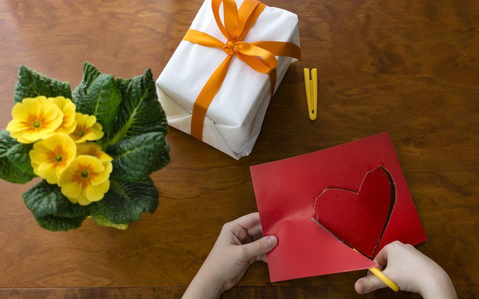 cadeau grand-mères plante