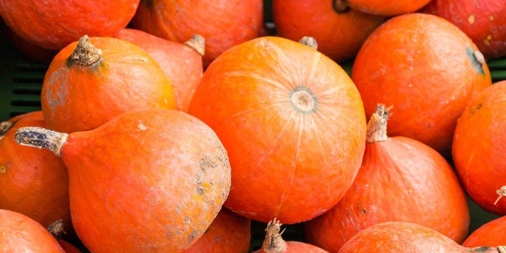 Le potimarron : incroyable légume de saison