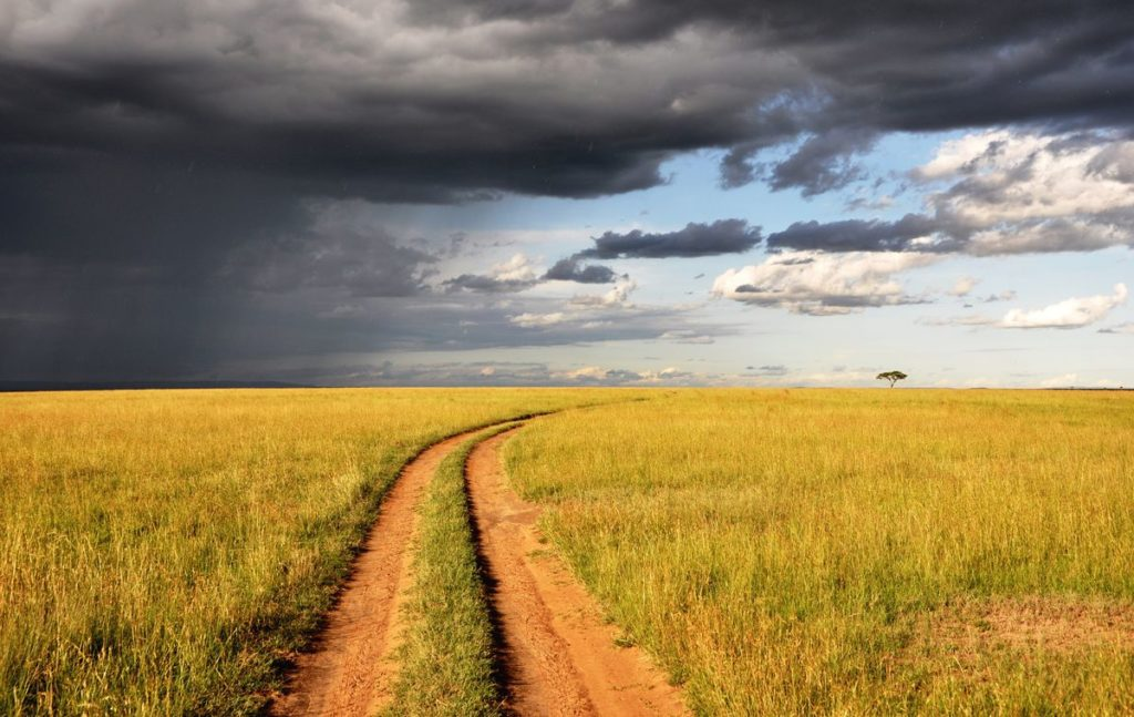 chemin dans les herbes avec un ciel menaçant à gauche et un ciel bleu à droite.
