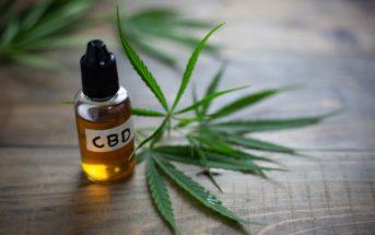Tout savoir sur l'huile de CBD, votre nouvel allié santé !