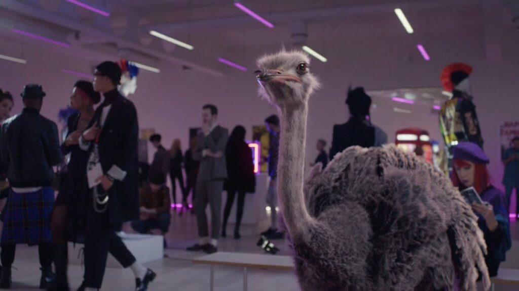 Musique de la pub Eurostar 2020 avec une autruche